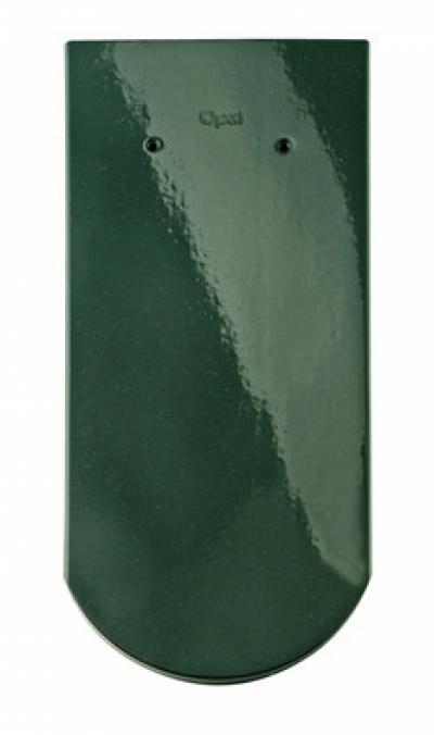 зеленая ель